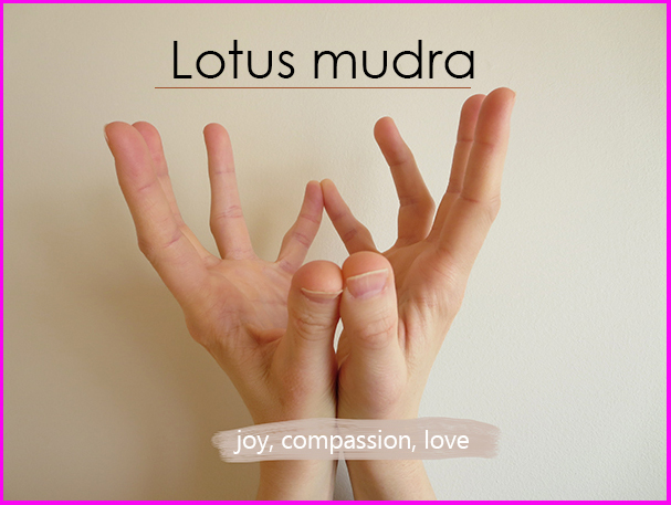 Lotus-Mudra-Hands-Pink